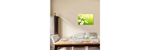 Glasbilder 70x50 cm
