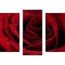 Wandbilder Blumen Rot 90x70 Glas 3 Teilig Acryl Bild...