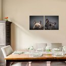 Hunde 50x50cm 2 Glasbilder Glasbild Echtglas Wandbild Deko