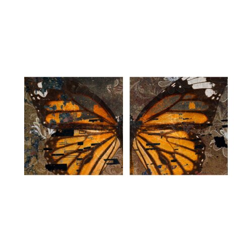 Schmetterling 50x50cm 2 Glasbilder Glasbild Echtglas Wandbild Deko