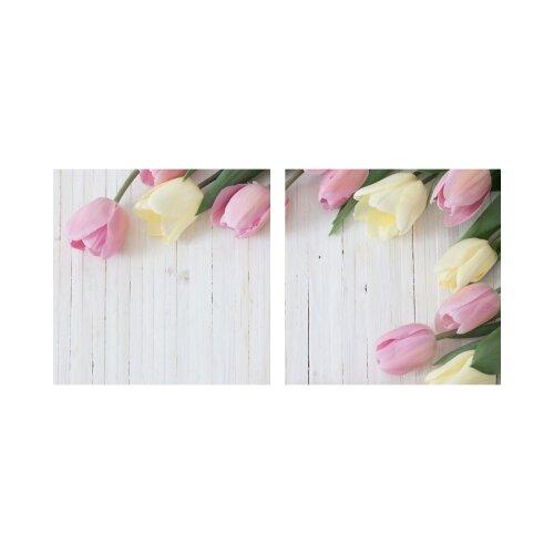Tulpen 50x50cm 2 Glasbilder Glasbild Echtglas Wandbild Deko