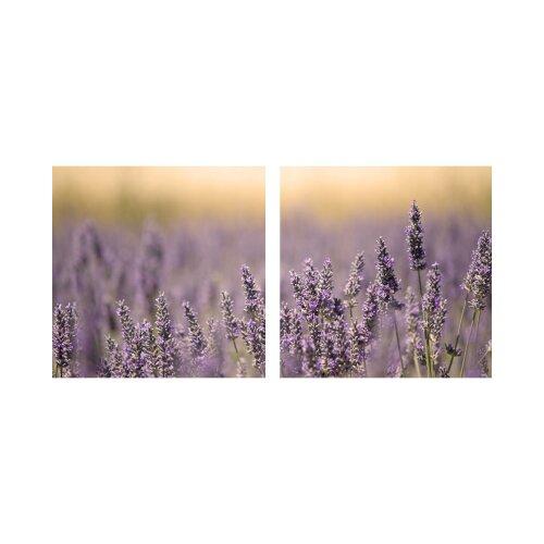 Lavendel 50x50cm 2 Glasbilder Glasbild Echtglas Wandbild Deko