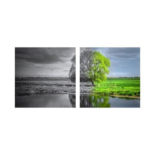 Baum 50x50cm 2 Glasbilder Glasbild Echtglas Wandbild Deko