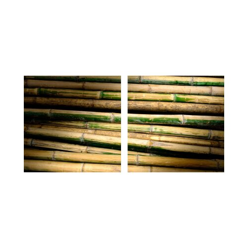 Bambus 50x50cm 2 Glasbilder Glasbild Echtglas Wandbild Deko