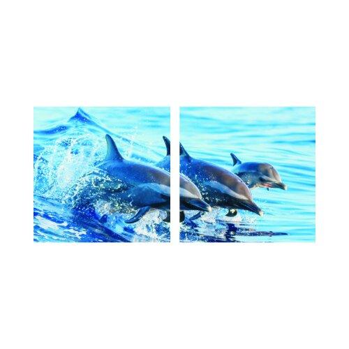 Delfine 50x50cm 2 Glasbilder Glasbild Echtglas Wandbild Deko