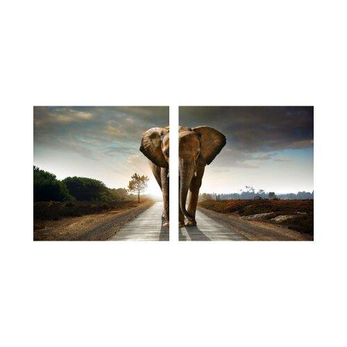 Elefant 50x50cm 2 Glasbilder Glasbild Echtglas Wandbild Deko