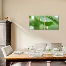 Aloes 50x50cm 2 Glasbilder Glasbild Echtglas Wandbild Deko