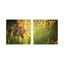 Fuks 50x50cm 2 Glasbilder Glasbild Echtglas Wandbild Deko