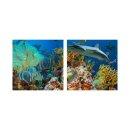 Fisch 50x50cm 2 Glasbilder Glasbild Echtglas Wandbild Deko