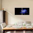 Wasserlilie 50x50cm 2 Glasbilder Glasbild Echtglas Wandbild Deko