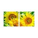 Sonnenblume 50x50cm 2 Glasbilder Glasbild Echtglas...