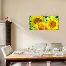 Sonnenblume 50x50cm 2 Glasbilder Glasbild Echtglas Wandbild Deko