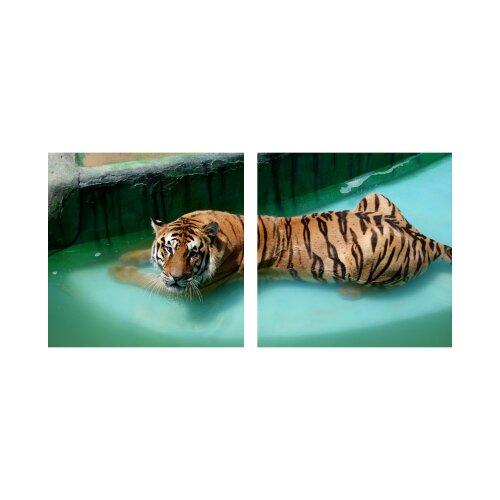 Tiger 50x50cm 2 Glasbilder Glasbild Echtglas Wandbild Deko