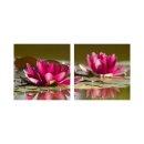 Wasserlilie 50x50cm 2 Glasbilder Glasbild Echtglas...