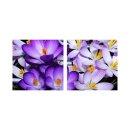 Blume 50x50cm 2 Glasbilder Glasbild Echtglas Wandbild Deko