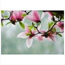 Blume 70x50cm Glasbilder Glasbild Echtglas Wandbild Deko