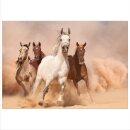 Pferde 70x50cm Glasbilder Glasbild Echtglas Wandbild Deko