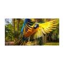 Papagei Echtglas Glasbilder Glasbild Echtglas Wandbild...