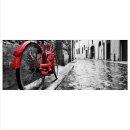 Fahrrad Echtglas Glasbilder Glasbild Echtglas Wandbild...
