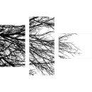 Dreiteiliges Wandbild 3 Teilig Glas Bild Glasbilder Baum...